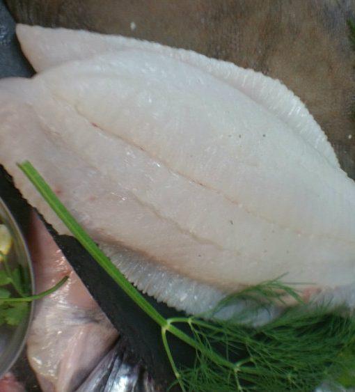 Brill Fillet fresh fish Berkshire