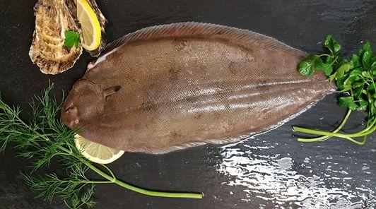Dover Sole fresh fish berkshire