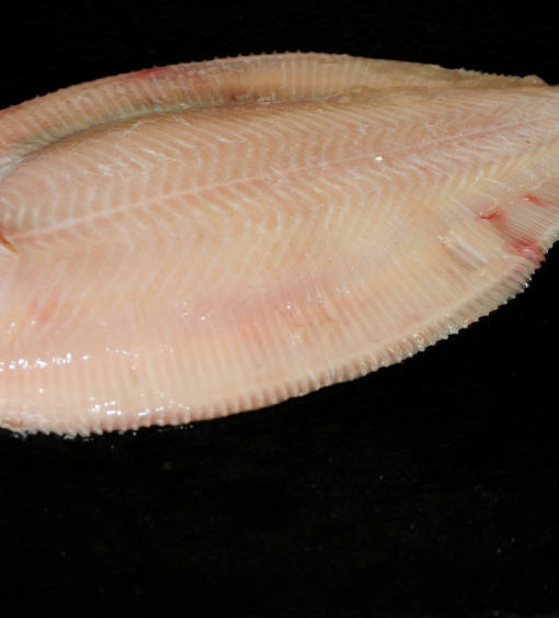 Lemon Sole (dressed) Fresh shish berkshire
