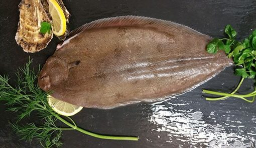 Dover Sole fresh fish berkshire